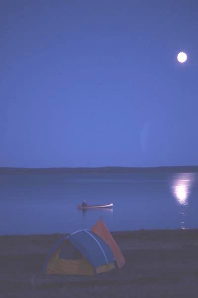 MoonLightBLA13