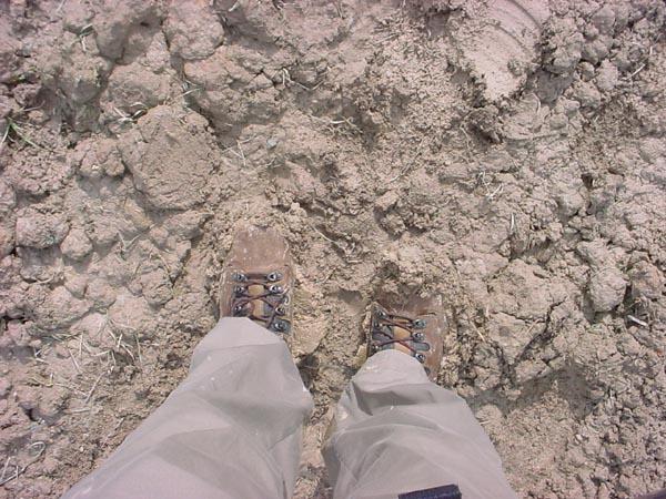 MuddyShoes03620