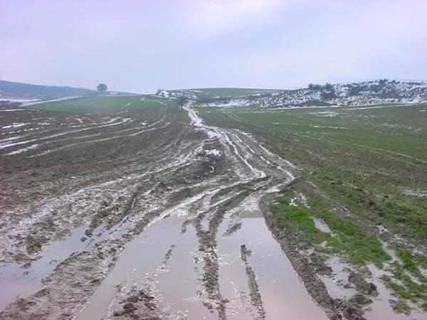 MuddyTrail03619