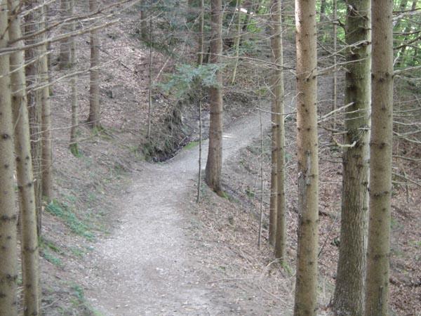 Trail03834