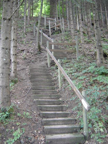 TrailSteps03843